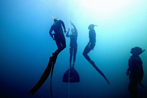 The Fifth Annual International Freediving Competition 2017 was celebrated in Roatan