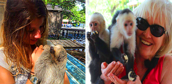 Monkey and sloth sanctuary in Roatan